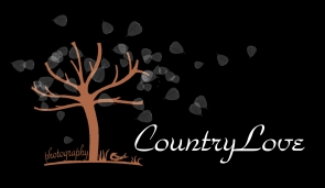 Countrylove Workshop